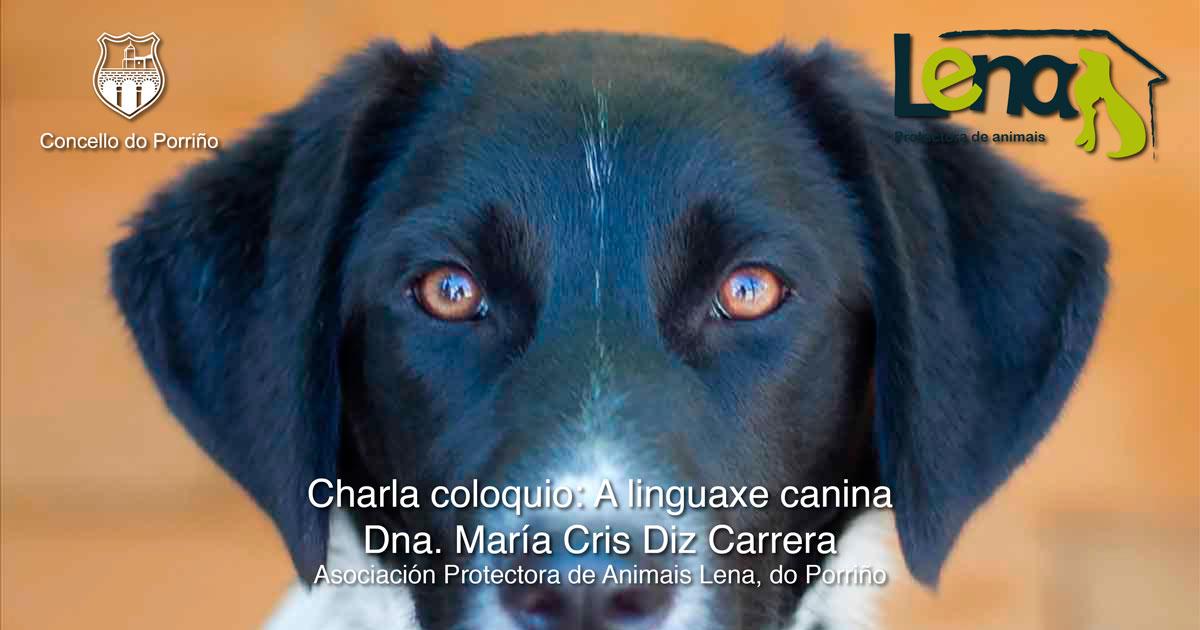 Charla coloquio: A linguaxe canina
