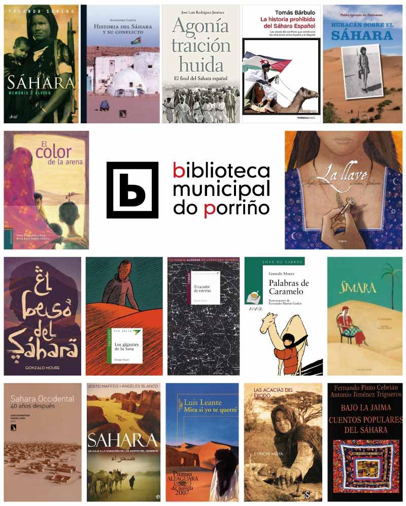 Libros sobre o Sáhara
