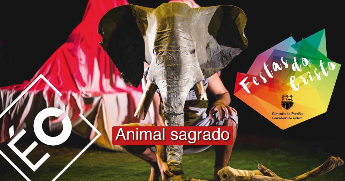 Teatro familiar: Animal sagrado. Festas do Cristo 2021. Concello do Porriño